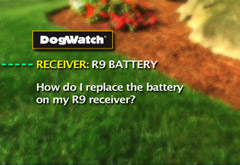 How do I replace the battery on my R9 receiver?