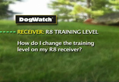 How do I change the training level on my R8 receiver?